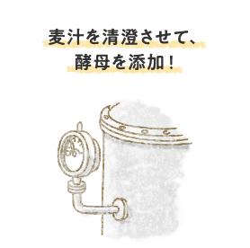 麦汁を清澄させて、酵母を添加!