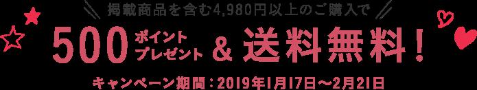 掲載商品を含む4,980円以上のご購入で500ポイントプレゼント&送料無料!キャンペーン期間:2019年1月17日〜2月21日