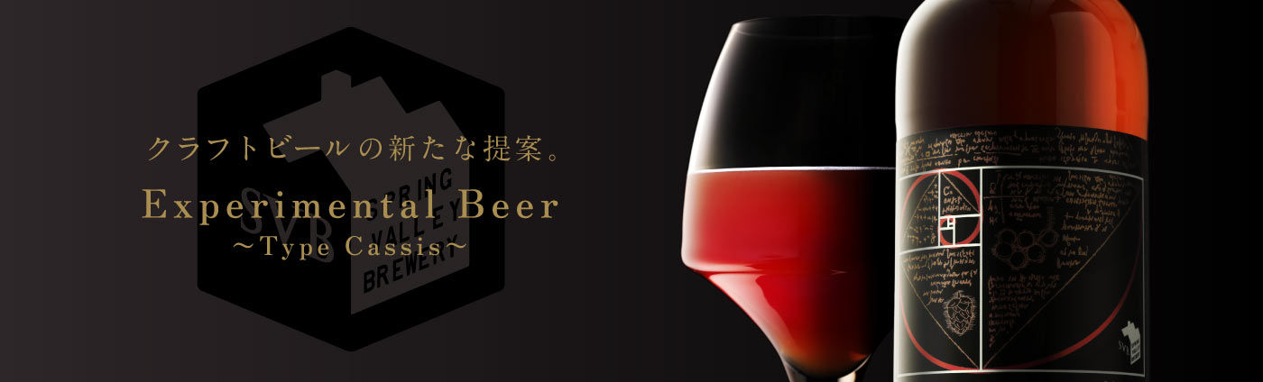 Experimental Beer ~Type Cassis~ 3本|キリン オンラインショップ DRINX